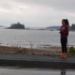 Seal Harbor 1